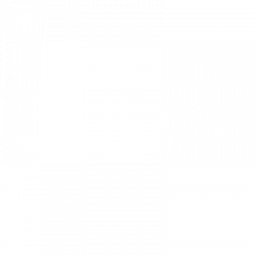 imagotipo falongym blanco